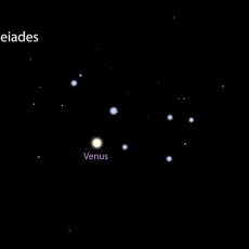 Venus in front of the Pleiades